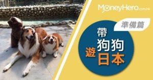 【 寵物旅行 】帶埋狗狗遊日本 同機同艙有咩要準備?