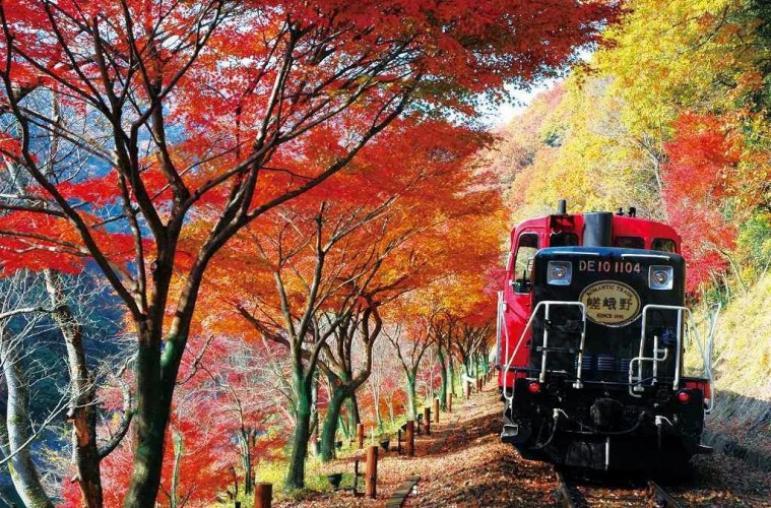 京都 嵐山小火車
