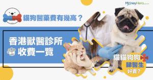 【寵物醫藥費有幾高?】貓狗洗牙/打針/絕育/身體檢查  獸醫診所收費一覽