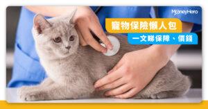 寵物保險邊間好?比較保費、主要醫療保障及第三者責任