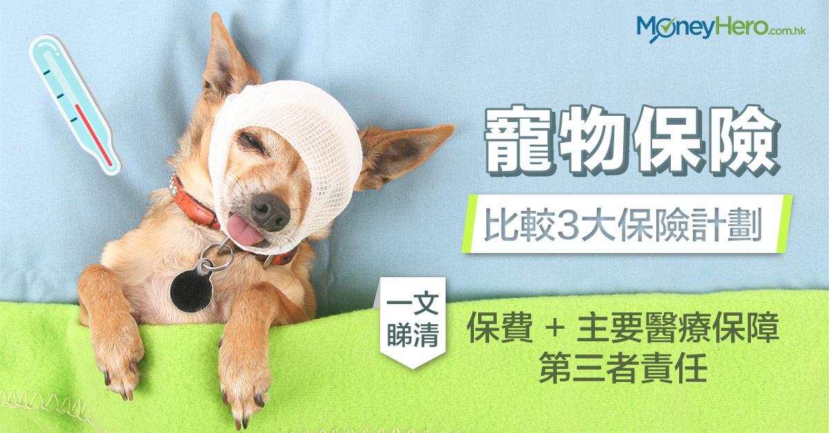 寵物保險 比較3大保險計劃-一文睇清保費、主要醫療保障及第三者責任