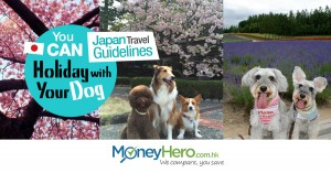 You CAN Holiday with Your Dog! Japan Travel Guidelines
